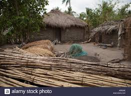 Mexican Thatch Roofing by Thatched Roof Animals Stock Photos U0026 Thatched Roof Animals Stock