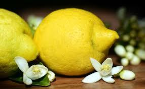 enlever odeur de cuisine 10 astuces de grand mère pour supprimer les odeurs de cuisine