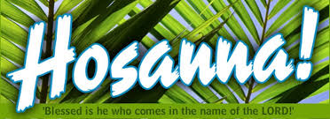 palms for palm sunday sermon categories palm sunday gold united methodist church