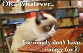 Grump Cat Meme - meme images grumpy cat meme wallpaper and background photos 36105481