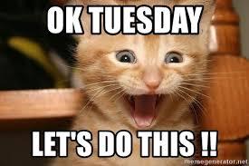 Happy Tuesday Meme - ok tuesday let s do this happy cats meme generator