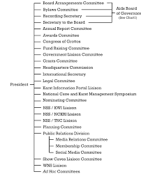 nss organization structure