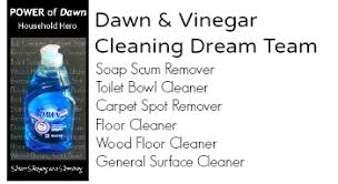 Cleaning A Bathtub With Vinegar Cleaning Dream Team Vinegar And Dawn U2013 Sisters Shopping Farm And Home