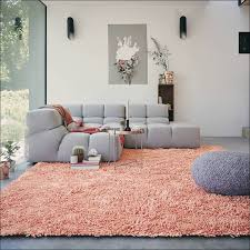 Coral Colored Area Rugs by Area Rugs Get The Right Coral Colored Area Rugs Coral Reef Blue