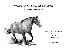 horse pictures bible verses