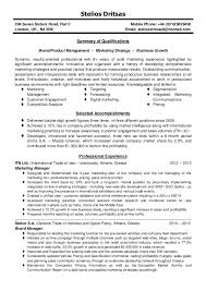 Mis Resume Example Marketing Manager Resume Template