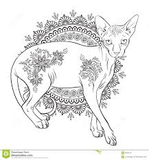 japanese bobtail coloring page life expectancy of japanese