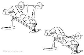 Barbell Bench Press Technique Decline Barbell Bench Press Illustrated Exercise Guide