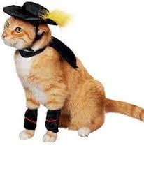 puss boots pet halloween costume star wars pug parade