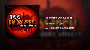 halloween owl sounds youtube