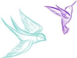 bird sketches by crazylittleowl on deviantart