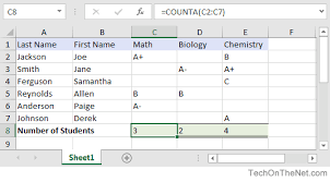 ms excel how to use the counta function ws