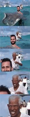 Stingray Meme - so i held a giant wild stingray funny held giant wild