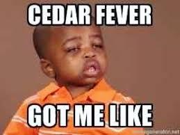 I Feel It Meme Black Kid - allergies got me like meme got best of the funny meme