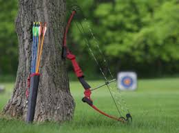 black friday bow and arrow home genesis bow