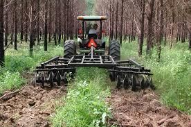 pine plantation disk harrow