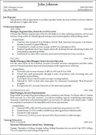 Sample Of Objectives In A Resume by Resume Objectives For It Professionals Uxhandy Com