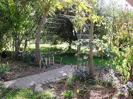 Trellis Garden Ideas Arched Trellis Ideas My Journey