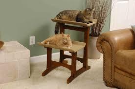 premium staging cat bed design on room corner part of furniture