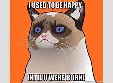 Meme Generator Grumpy Cat - meme generator grumpy cat makeupgirl 2018