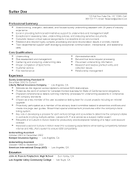 Resume Samples Professional Summary by Professional Surety Underwriting Assistant Iii Templates To
