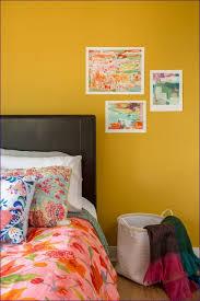 Bathroom Earth Tone Color Schemes - bedroom room color ideas colour choice for bedroom bedroom color
