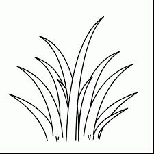plant coloring pages coloringsuite com