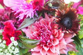 farm fresh flowers farm fresh flower bouquets peterson