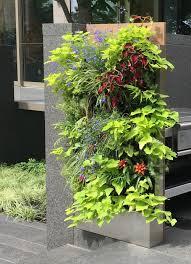 vertical garden florafelt blog u2014 florafelt vertical garden systems
