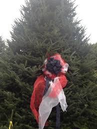 papanoel the 2012 whitehouse tree