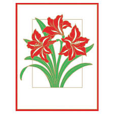 caspari cards amaryllis embossed boxed christmas cards 10 cards 10 envelopes
