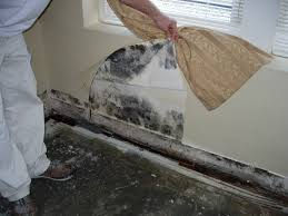 flood damage mold and how to start rebuilding your home u2013 the