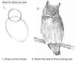 Art School Owl Meme - how to draw and owl imgur