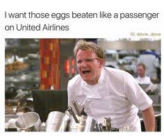 Chef Gordon Ramsay Memes - chef gordon ramsay i can t stop laughing pinterest chef