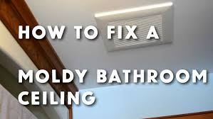 How To Clean Mold In Bathroom How To Get Rid Of Mold On Bathroom Ceiling Simple Home Design