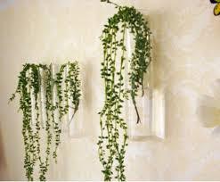 Vases For Home Decor Amazon Com Cylinder Glass Wall Hanging Vase Bottle For Plant