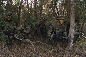 Color Blind Camouflage Test Some Existing Military Camouflage Examples Camouflagepatterns