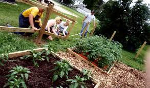 come realizzare un giardino pensile come realizzare un giardino pensile sostenibile giardino