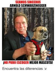 Arnold Schwarzenegger Memes - seamos sinceros arnold schwarzenegger no puido escoger mejor mascota