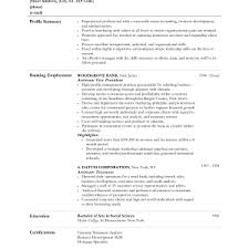 Career Objective For Resume For Bank Jobs by Cover Letter Objective For Resume For Retail Example Resume For