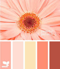 best 25 peach paint ideas on pinterest home colors