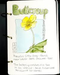 travel sketch journal google search painting pinterest