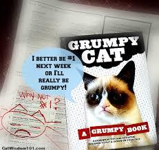 Grumpy Cat Photo 1 Best - win the best selling grumpy cat book cat wisdom 101