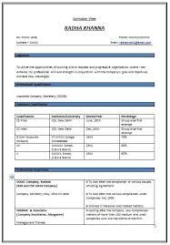 experience format resume accountant resume sample accountant