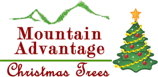 christmas tree lot locations mountain advantage christmas trees