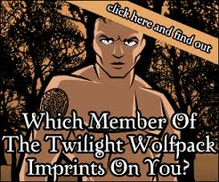 twilight wolf pack quiz which wolf pack member imprints on you