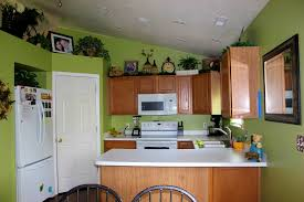 Kitchen Paint Ideas White Cabinets 100 Gray Green Kitchen Cabinets Best 25 Color Kitchen