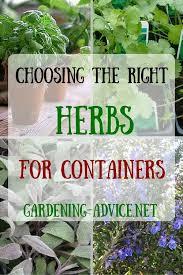 Herb Container Gardening Ideas Herb Container Gardening Ideas Outdoor Decorating Inspiration 2018