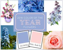 2016 color of the year 2016 color of the year flowers