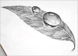 easy 3d art pencil drawing how to draw 3d dew drop on leaf 5
